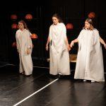 Cercurile increderii - teatrulapropo (1)